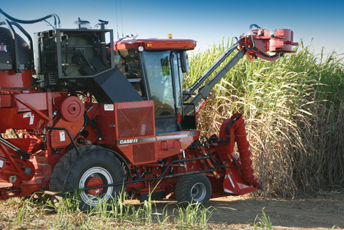 Cane Harvester Gallery
